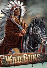 Wild Guns Poster