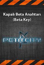 Peta City  Poster