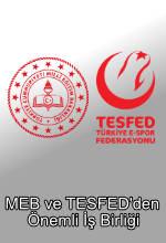 MEB ve TESFED'den Önemli İş Birliği Poster
